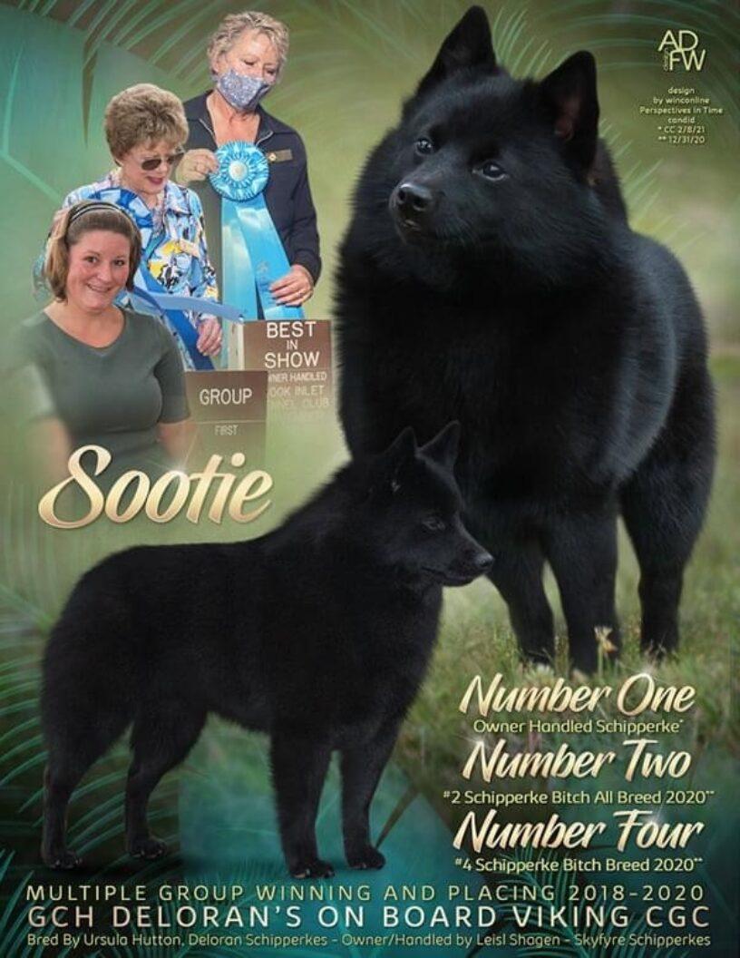 #11 Sootie
